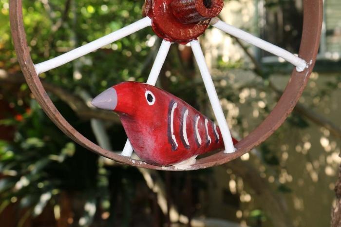 Large Red Bird